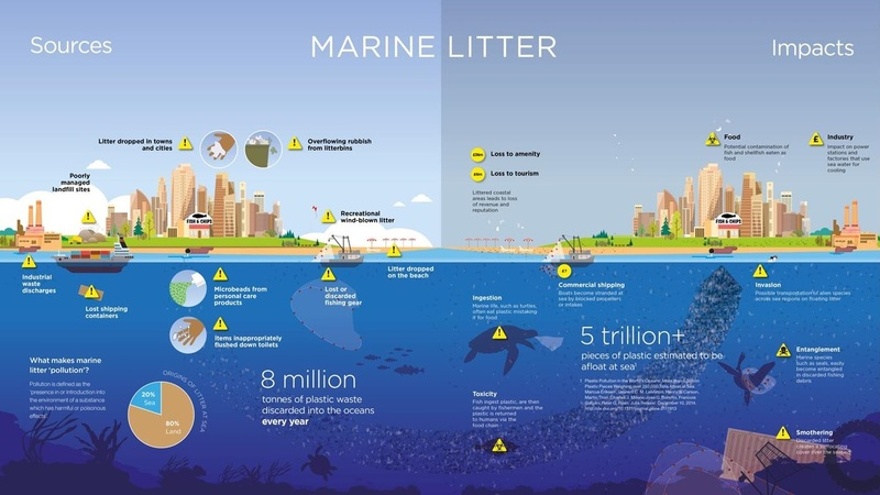 MArineLitter Sources and Impacts infographic